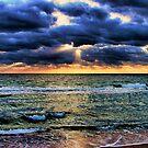 Mother, Mother Ocean by Jamie Lee