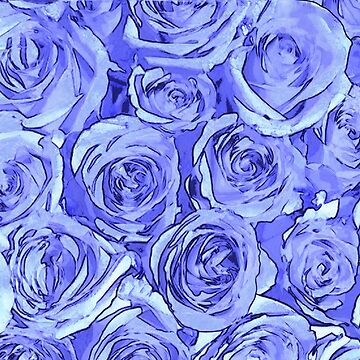 Light Blue Roses by GriffinJDesigns