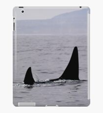 Orca Female & male iPad Case/Skin