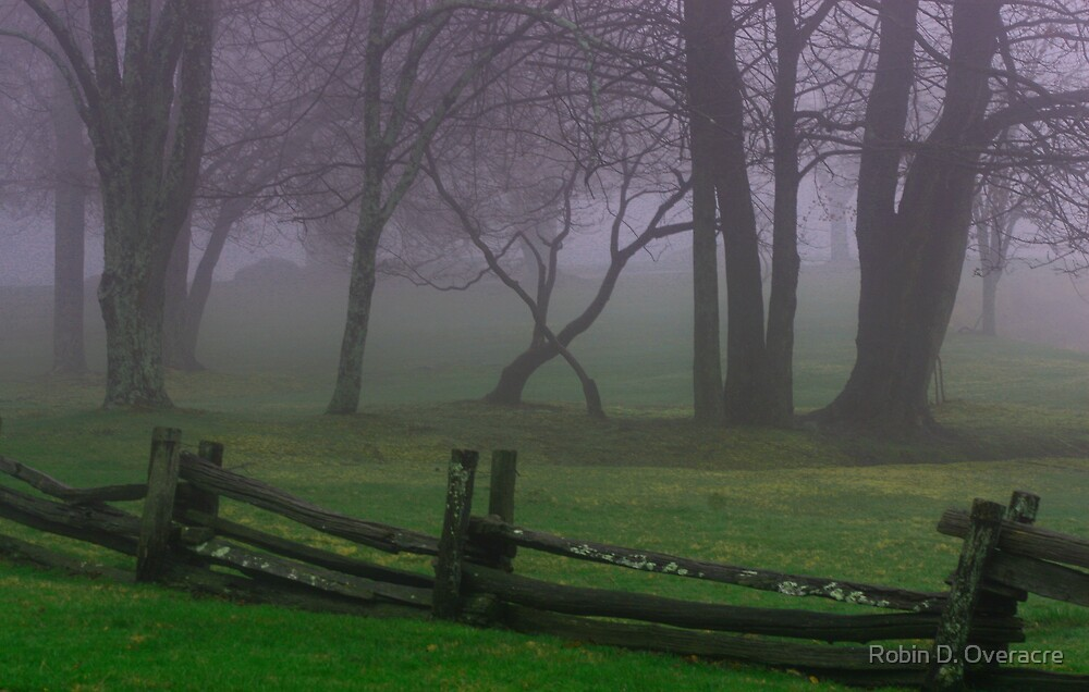 In The Mist by Robin D. Overacre