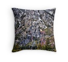 America the Beautiful Throw Pillow