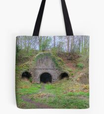 Lime Kilns Tote Bag