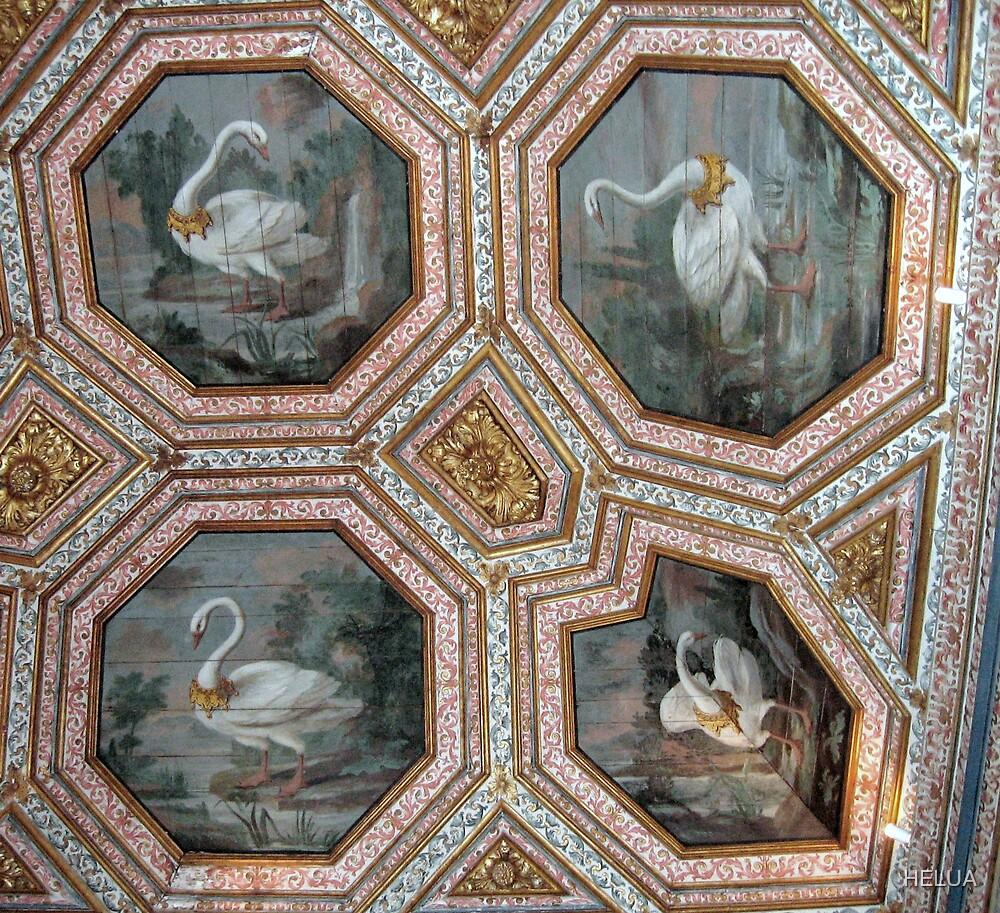 The Swan Ceiling by HELUA