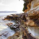 Wasp Head, NSW by Christine Smith