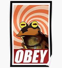 obey hypnotoad frog crazy funny humor  Poster