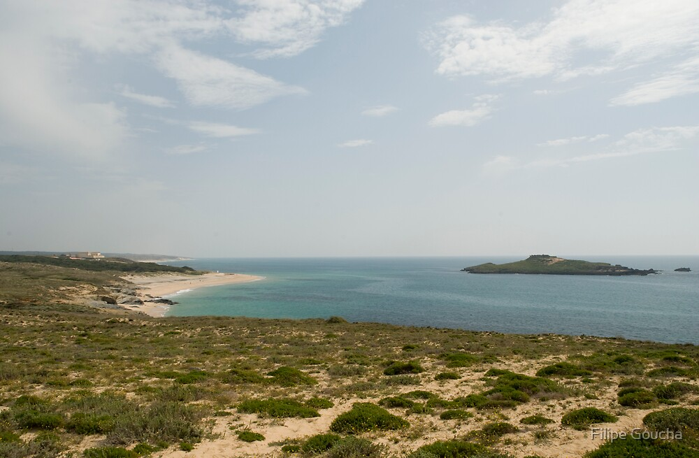 Ilha do Pessegueiro by Filipe Goucha