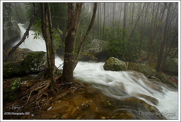 Cascade on Shillalah Creek by ThomasRBiggs