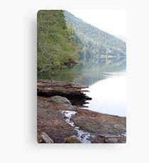 """Lake Crescent Shoreline"" Metal Print"