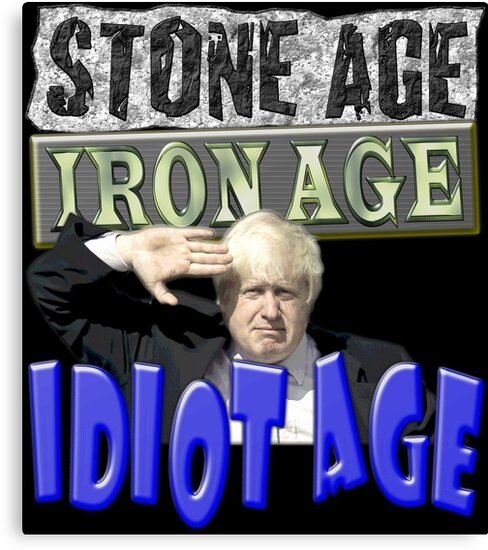 Stone Age Iron Age IDIOT AGE by Paparaw