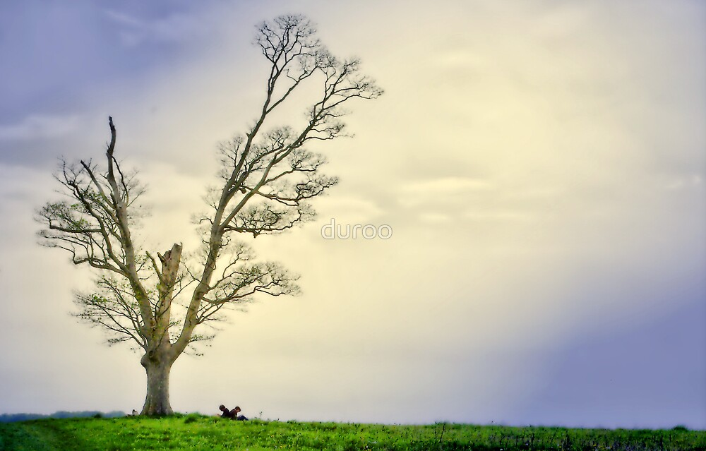 Tree for 2 by duroo