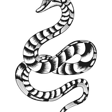 Dangerous angry toxic hungry snake by tunke