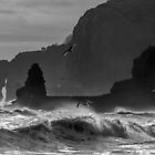 SURGING SEA by Michael Carter