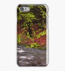 Gentle Touch of Spring iPhone Case/Skin