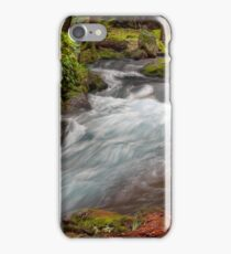 Spring Zen iPhone Case/Skin