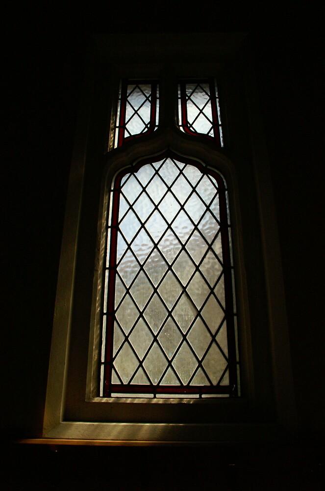 Window by Shannan Edwards