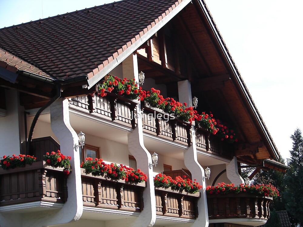 Glottertal - Germany by longlegs
