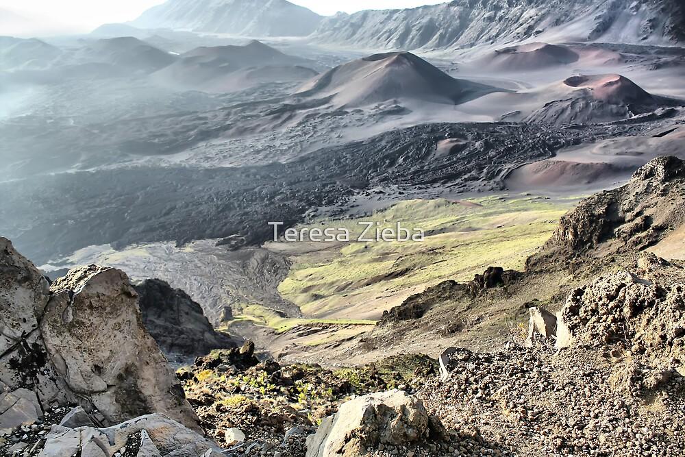 Haleakala Crater, Maui, Hawaii by Teresa Zieba
