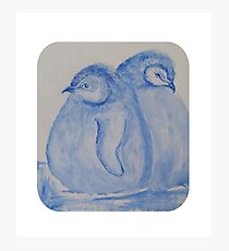 Blue Baby Brother Penguins Photographic Print
