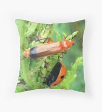 Soldier beetle Vs Ladybird Who Won? Throw Pillow