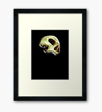 SKULL, Deaths head, Halloween, WITCHCRAFT, WICCA, WIZARD, GOTH, Death Head, Human Skull, Pirate, on BLACK Framed Print