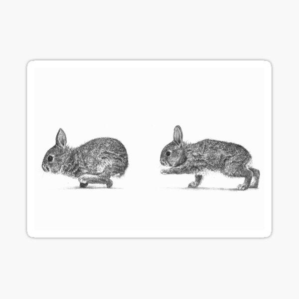 Oma Rapeti - Cute Running Rabbits! Sticker