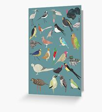 Oiseaux Alphabetiques -  A to Z birds - papercuts Greeting Card