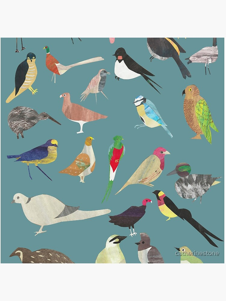 Oiseaux Alphabetiques -  A to Z birds - papercuts by catherinestone