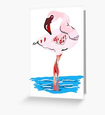 Flamingo In Water Greeting Card
