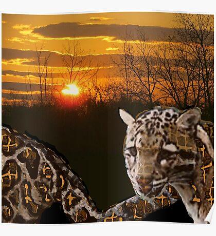 Fire Leopard Poster