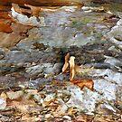 Tidal Surge by Shelley Heath