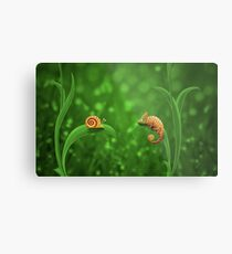 Snail and Chameleon Metal Print