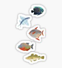 Fishy Sticker Pack 2 Sticker