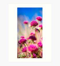 Wildflower Season Art Print