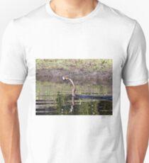 ANHINGA WITH CATFISH T-Shirt