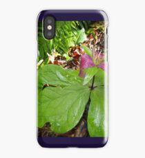 purple trillium #3 iPhone Case/Skin