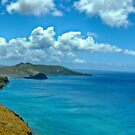 Caribbean View by photorolandi