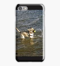 Canine Water Sports iPhone Case/Skin