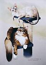 Puss n puss by Heidi Schwandt Garner