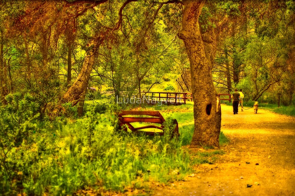 Solstice Canyon, California - II by LudaNayvelt