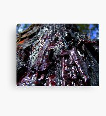 Raw-Red Amber.... Canvas Print