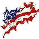 Star Spangled Banner by WhiteDove Studio kj gordon