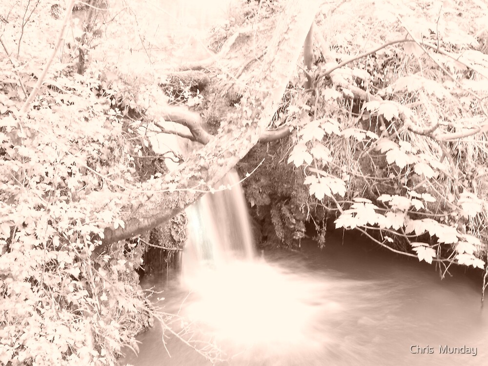 Natures Flow by Chris  Munday
