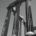 Roman Ruins in Evora, Portugal B/W by CherylBee