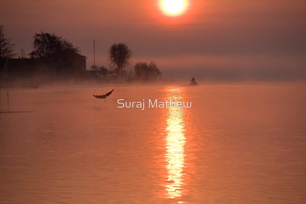 The Early Bird by Suraj Mathew