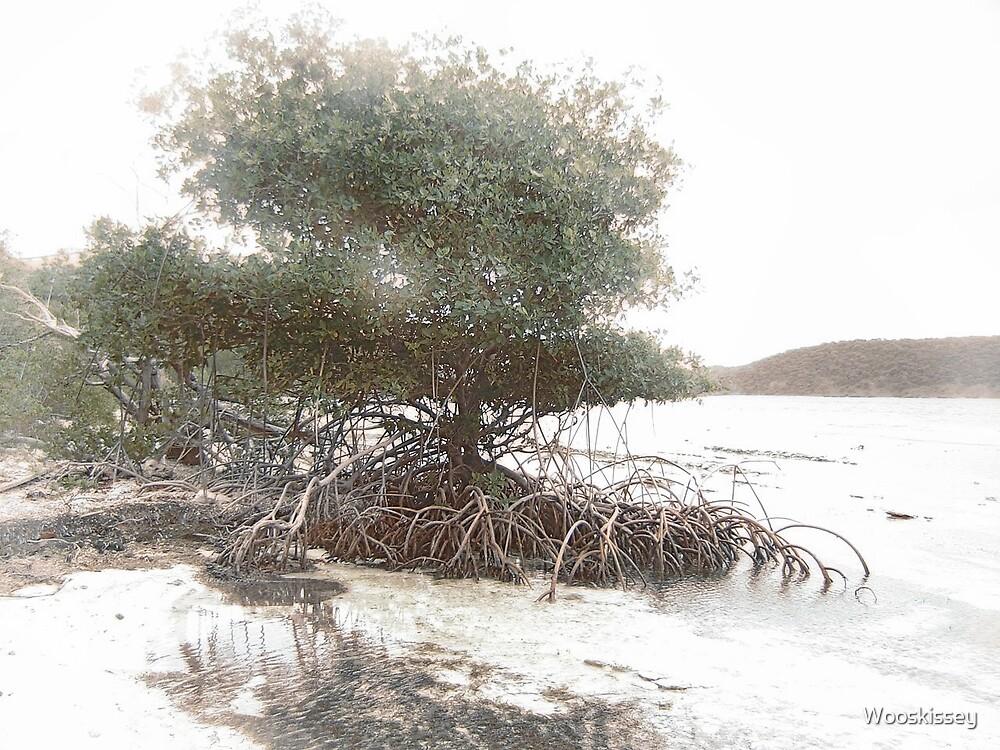 Coral Reefer Tree  by Wooskissey