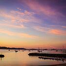 Dawn at Shute Harbour by Greta van der Rol