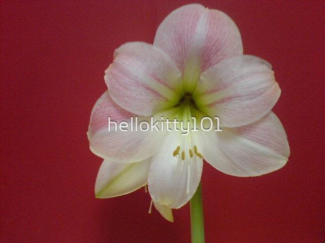 flower by hellokitty101