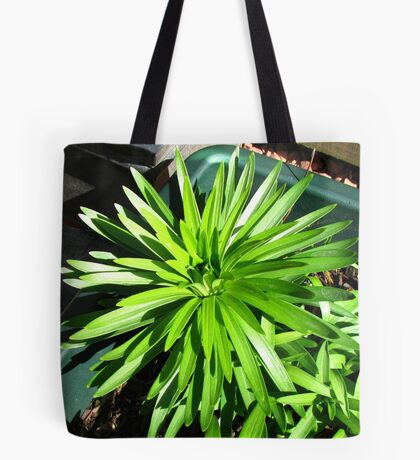 Green and Gorgeous - Sunlit Lily Leaves Tote Bag