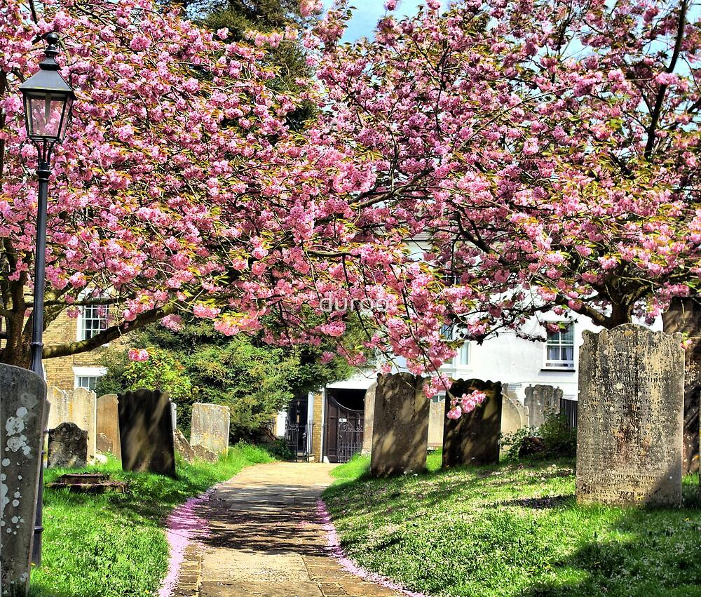 English Churchyard by duroo