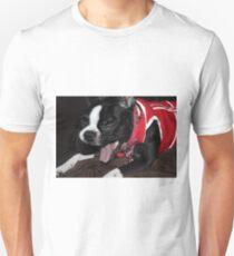 Kitana - Boston Terrier T-Shirt